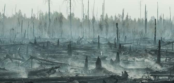 В Сибири в России горят миллионы гектаров леса: их не тушат из-за экономии – фото, видео