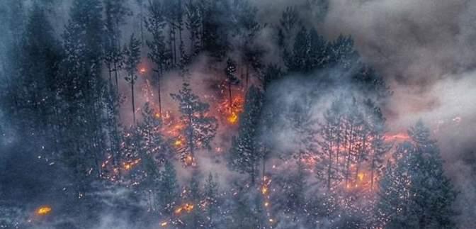 В Сибири продолжают гореть леса: россияне выражают свое возмущение в соцсети