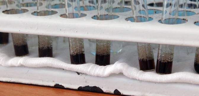 В Кривом Роге обнаружили первый случай коронавируса