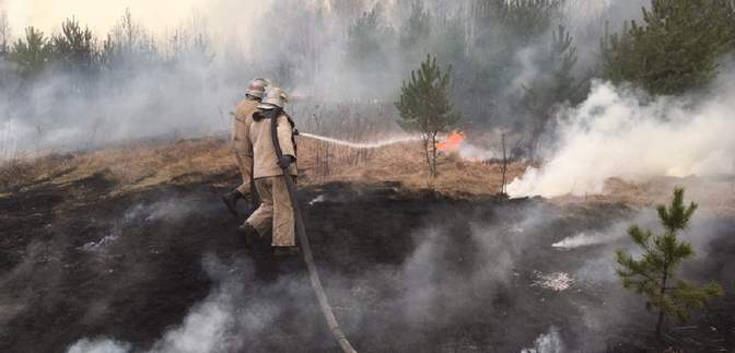 Чому в Україні не було мітингів через лісові пожежі – пояснення політолога