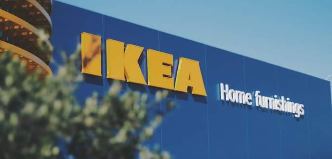 Незаконная рубка украинского леса и IKEA: в компании отреагировали на скандальное расследование