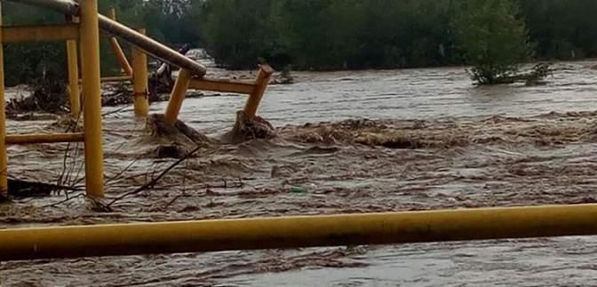 Вырубка леса, строительство ГЭС и мусор: эколог назвала главные причины наводнения в Украине