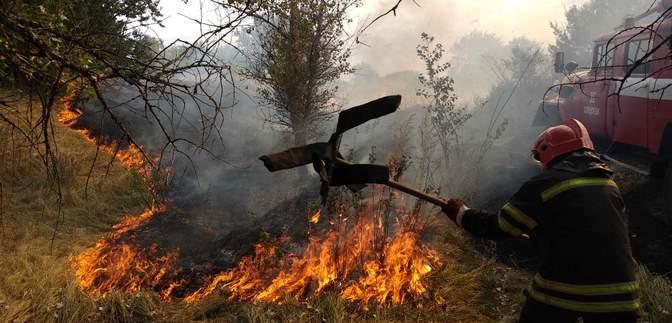 На Луганщині знову вирує масштабна пожежа: горить суха трава – відео