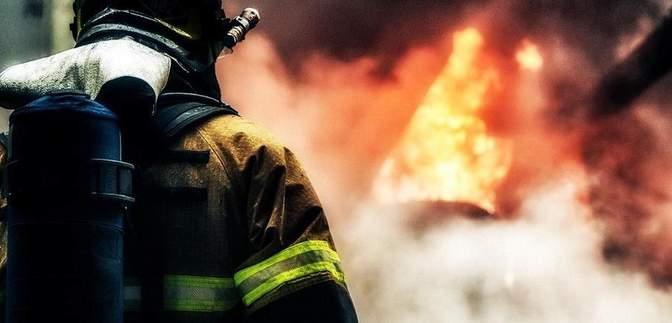 Масштабна пожежа на Донеччині: горить ліс біля Краматорська – фото й відео
