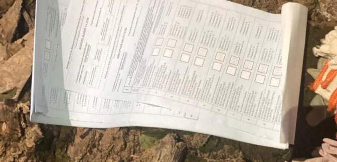 Вместо настоящих бюллетеней – поддельные: на Днепропетровщине обнаружили фальсификацию