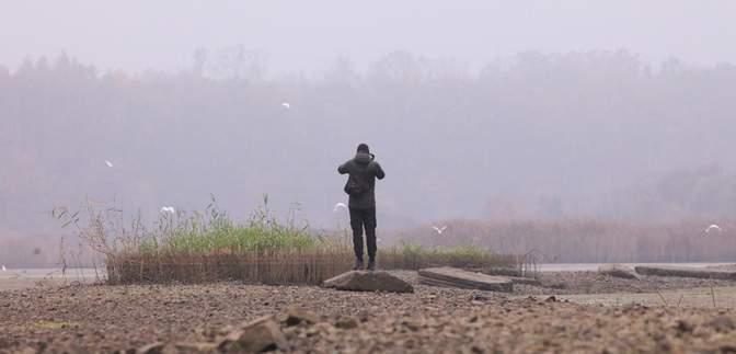 Путешествие для карантинного досуга: на Закарпатье начали развивать бёрдвотчинг