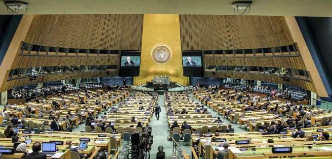 Украина в ООН не поддержала российскую резолюцию против нацизма: причины и детали