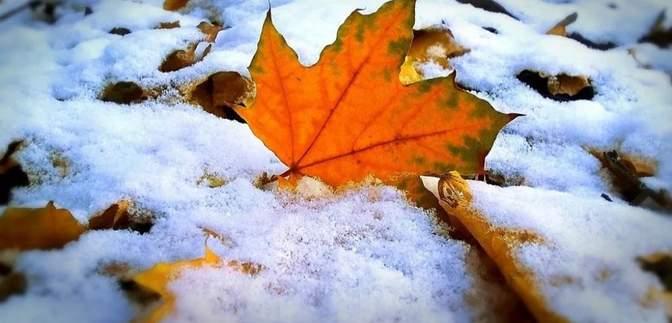 Прогноз погоды на 21 ноября: в Украине будет холодно и ветрено