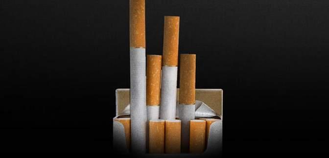 Поліція Данії накрила підпільну тютюнову фабрику, затримали українців та поляків