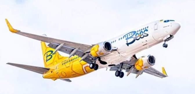 Bees Airline відкрив продажі на перші 4 регулярних маршрути: скільки коштують авіаквитки