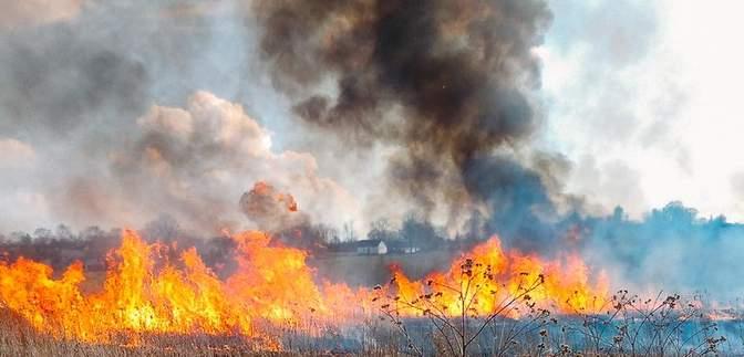 Нарушителей штрафуют: во Львовской области устраивают рейды на поджигателей травы