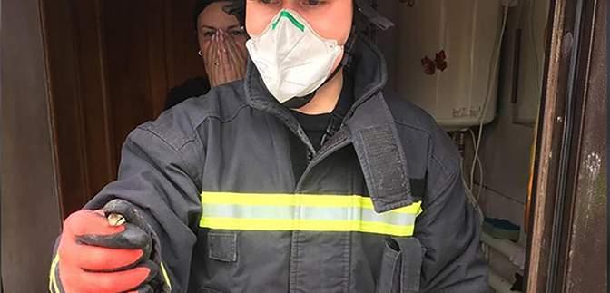 Змія залізла до ванної кімнати: у Дніпрі швабра врятувала життя людей – фото