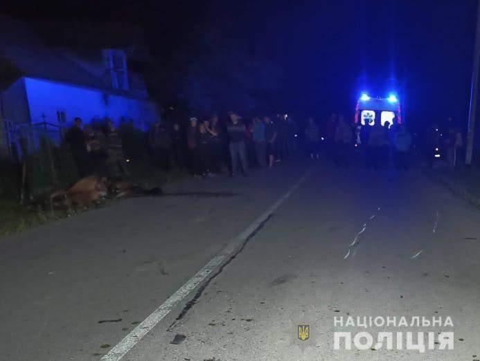 На швидкості влетів у коня: на Львівщині трагічно загинув мотоцикліст – фото