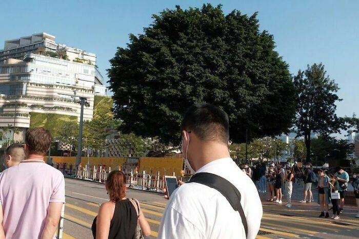 У хлопця крута зачіска