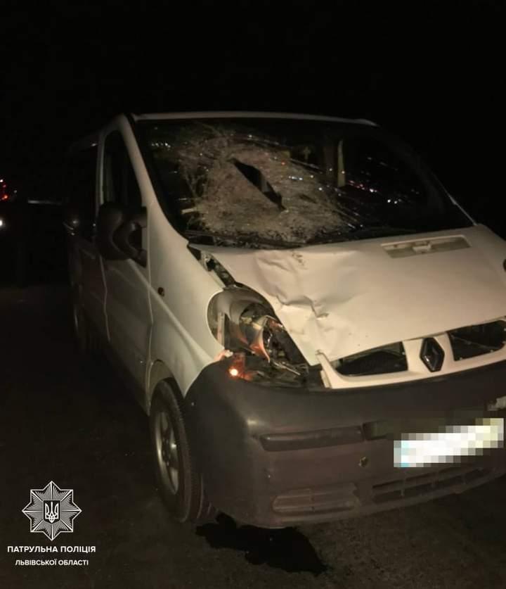 На трасі Львів – Краковець мікроавтобус на смерть збив пішохода: фото