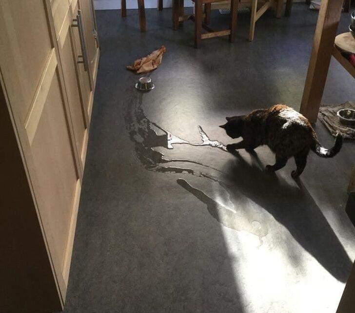 И в этом котике тоже, потому что он всегда рисует водой из собственной миски