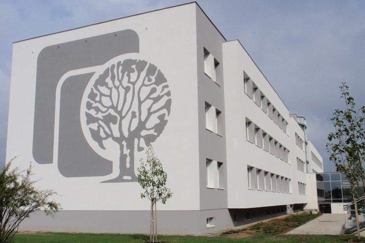 Фрески на стінах залишають у первозданному варіанти / Фото Хмарочос