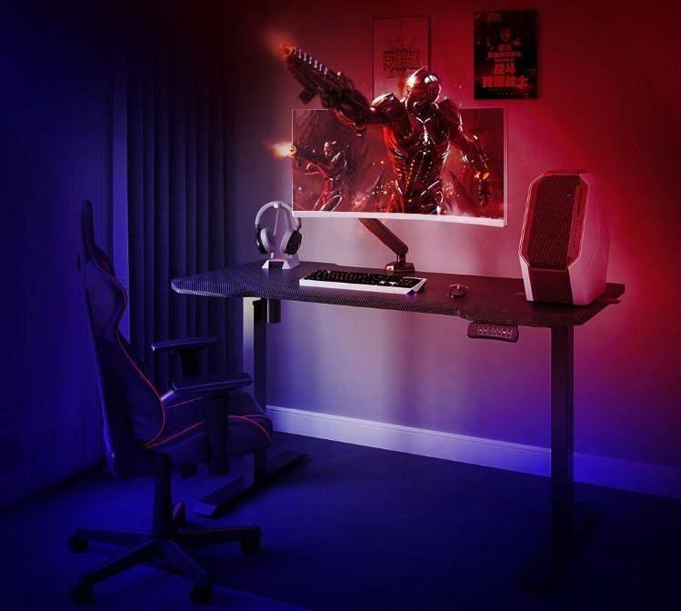 Loctek Electric Standing Desk.