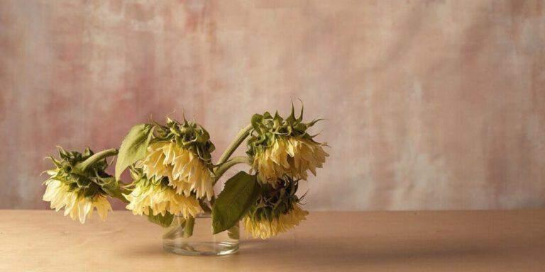 Флористы делают композиции с цветами соответствующего цвета