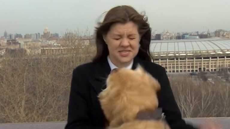 Собака вирвав мікрофон із рук у прямому ефірі