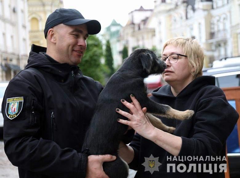 Безпритульна тварина,  собака, метрополітен, Київ, поліція, порятунок