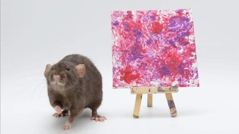 Щурик малює картини