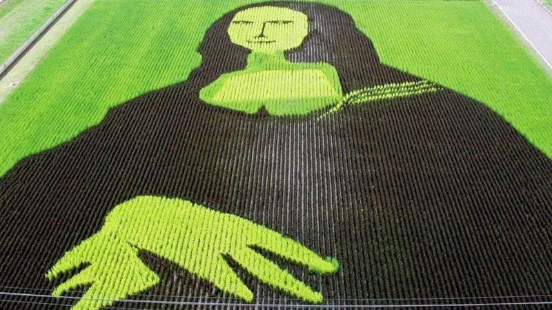 Мона Ліза з рису