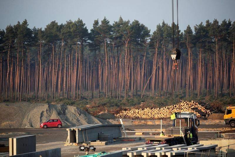 Суд Німеччини дозволив Tesla розчищати ліс