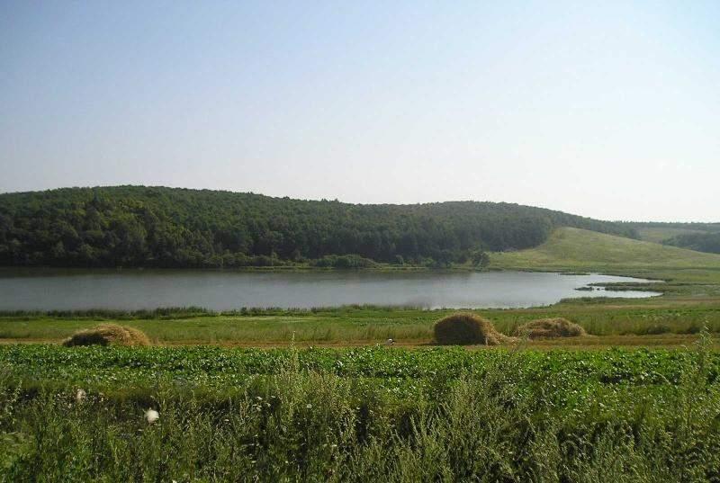 У Здолбунівському озері вода чиста