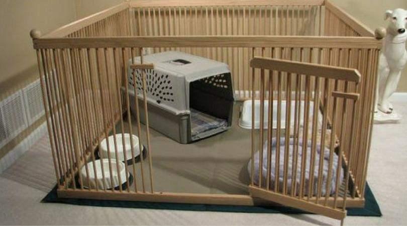 Когда вас нет дома, щенка можно содержать в квартирном вольере