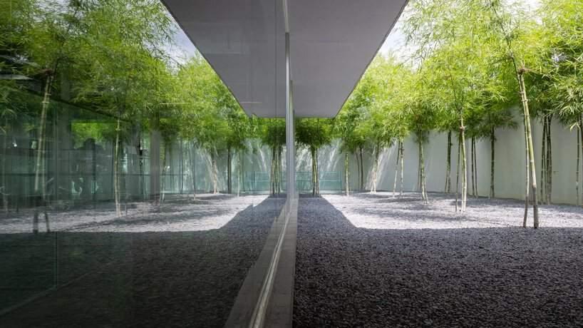 Чудове місце для натхненної праці  / Фото Designboom
