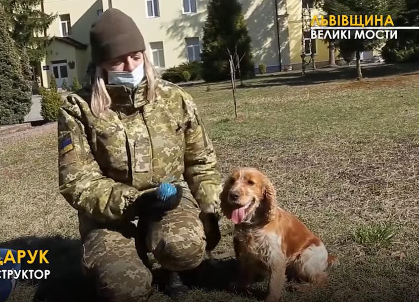 В учебном центре работают со служебными и охотничьими собаками