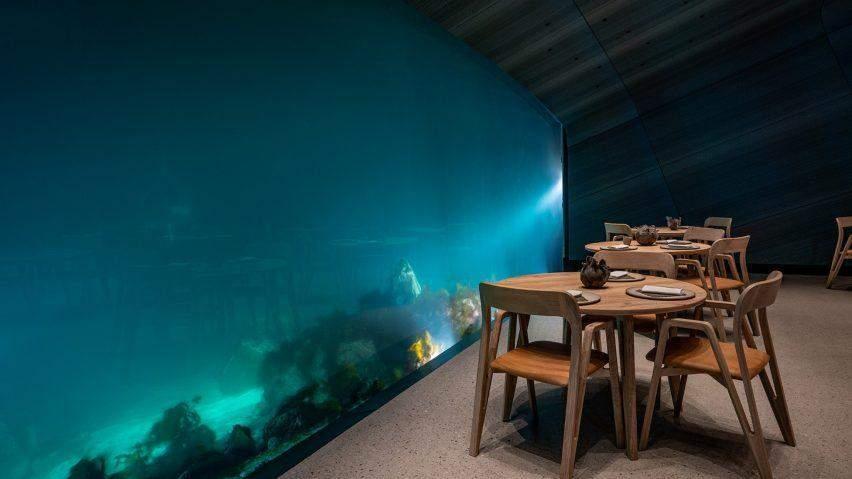 Сквозь прозрачное окно видно подводный мир