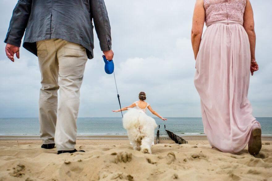 Кумедне фото нареченої та песика