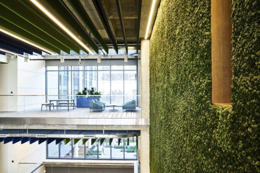 В інтер'єрі використали вертикальне озеленення