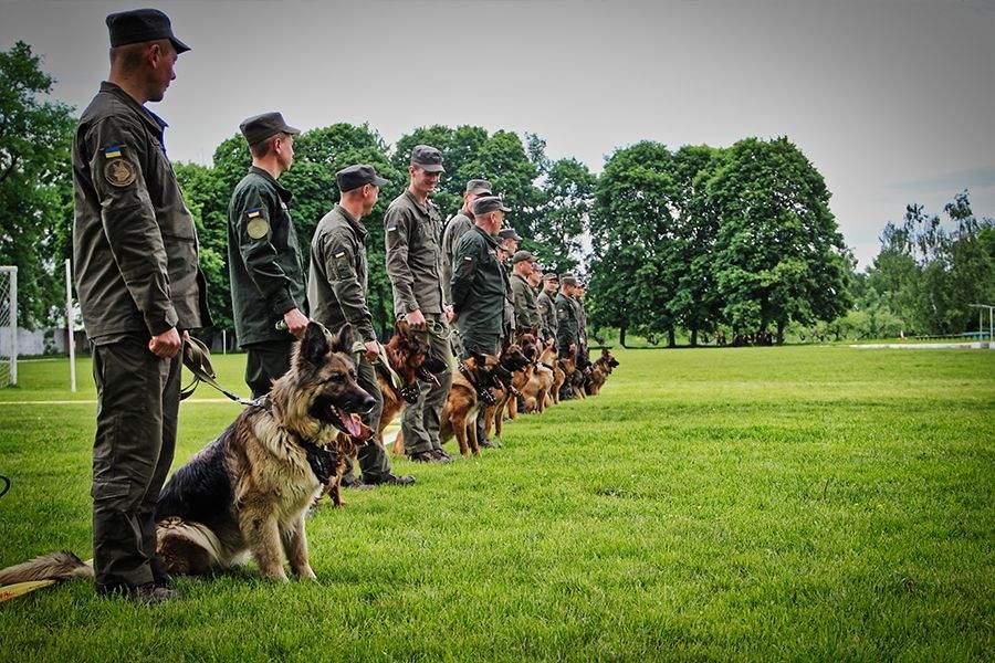 змагання кінологи службові собаки