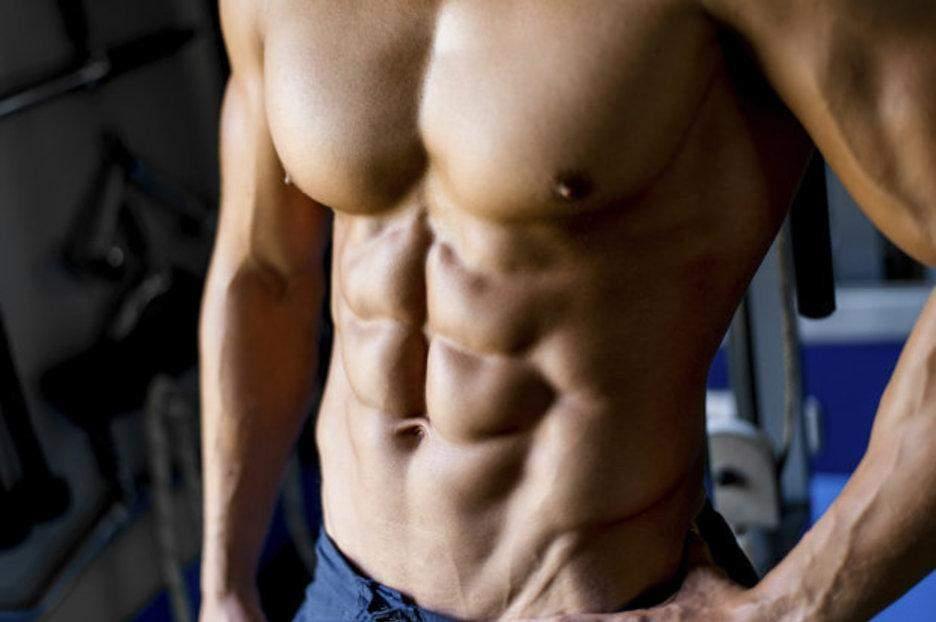 Поперечний м'яз живота підтримує хребет