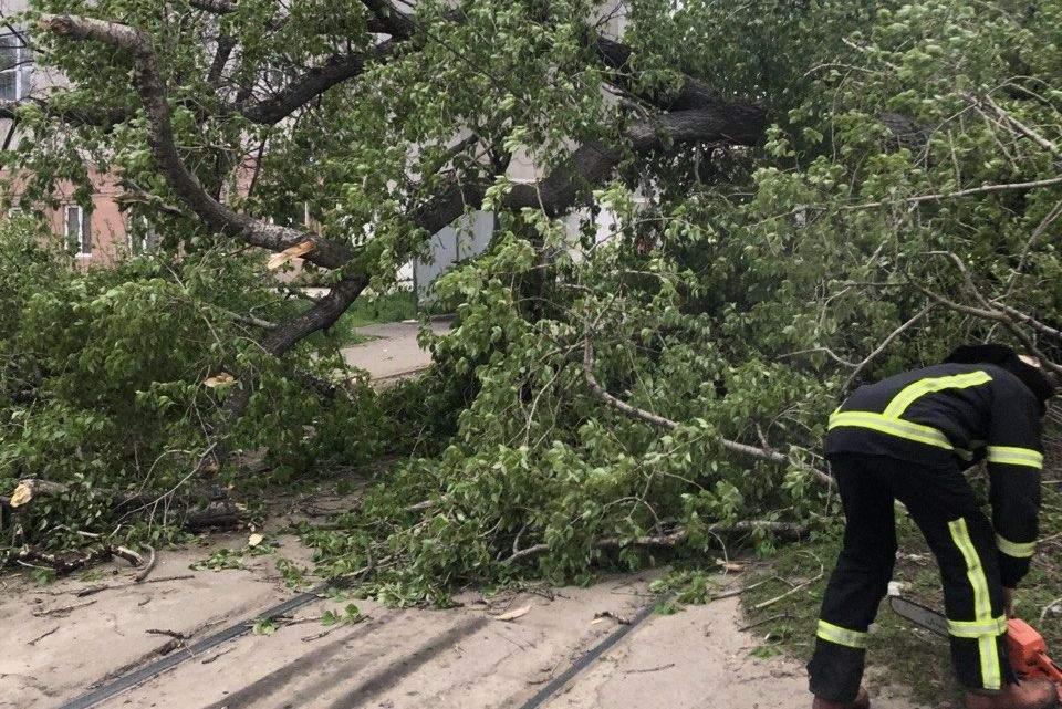 ДСНС Харків шквальний вітер повалені дерева