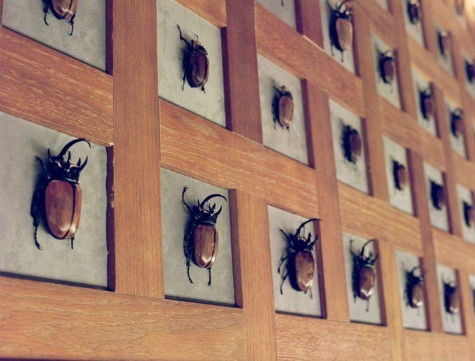Інтер'єр бару приваблює любителів комах