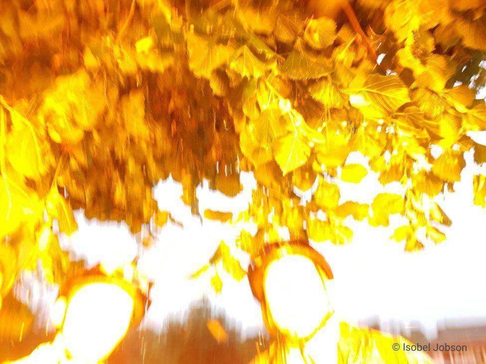 Момент, коли вдарила блискавка /  Фото Isobel Jobson BBC